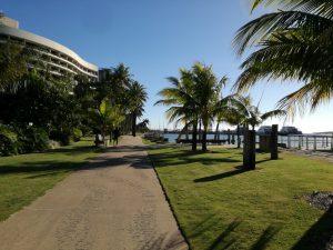 国際会議ISIE2018@CairnsとACC2018@Milwaukeeへの参加(堀藤本研)
