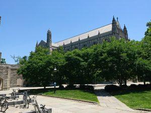 Princeton – 東大 プラズマサマースクール